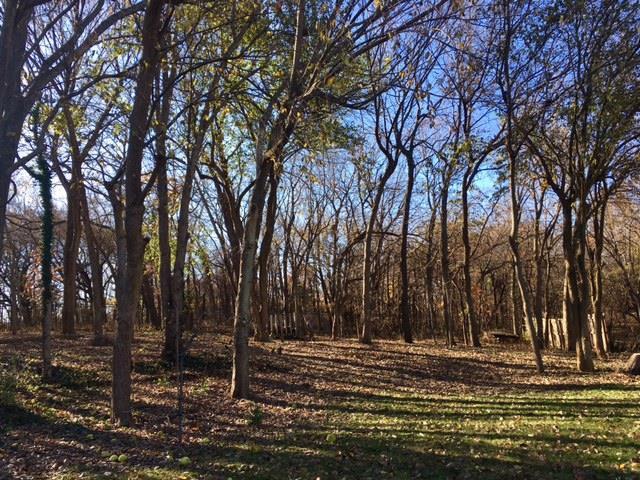 Kimstin Court, Blue Springs, MO 64015 (#2079276) :: NestWork Homes