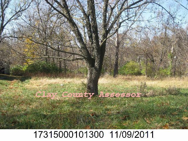3822 N Flora Avenue, Kansas City, MO 64116 (#2080005) :: NestWork Homes