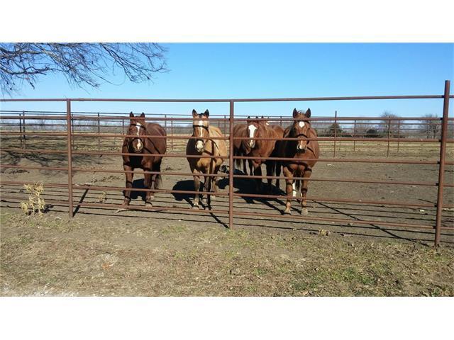 13106 Quinn Road, Pleasanton, KS 66075 (#2083788) :: Edie Waters Team