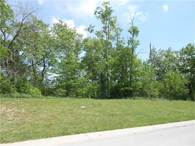 Lot 13 Crimson Court, Kearney, MO 64060 (#2085908) :: No Borders Real Estate