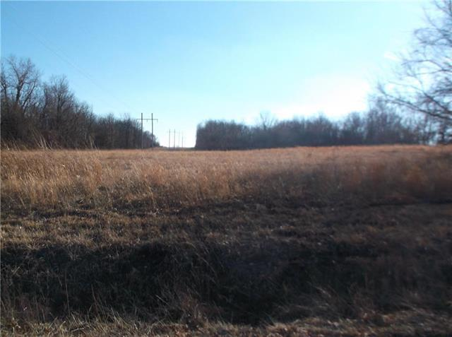 Lot 10- 267th Street, Harrisonville, MO 64701 (#2086290) :: Edie Waters Network