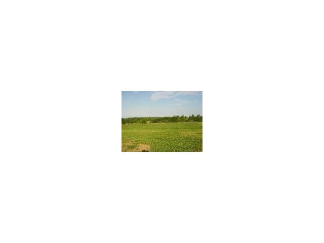 Lot 10 Pegars Mnt. Estates N/A, Excelsior Springs, MO 64024 (#2086553) :: Dani Beyer Real Estate