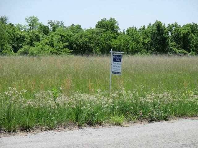 Lot 108 Ridgeview Drive, Bates City, MO 64011 (#2089728) :: Team Real Estate