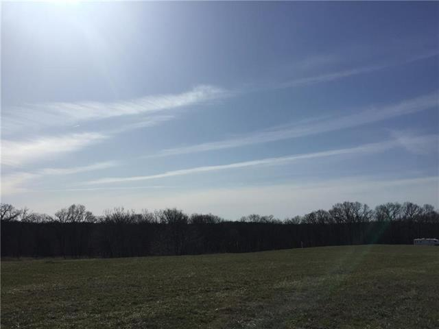 LOT 10 SW Lakeview Drive, Trimble, MO 64477 (#2098846) :: The Gunselman Team