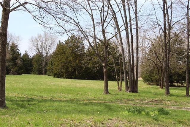 38936 Lone Star Road, Fontana, KS 66026 (#2100541) :: The Shannon Lyon Group - ReeceNichols