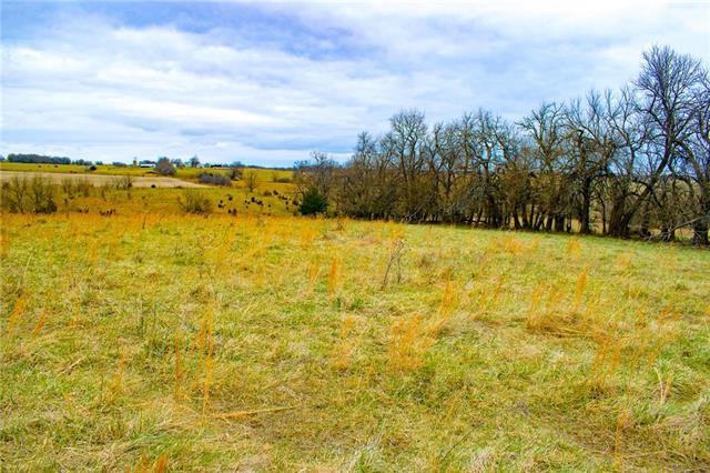 Beaver Creek Road, Paola, KS 66071 (#2102613) :: Kedish Realty Group at Keller Williams Realty