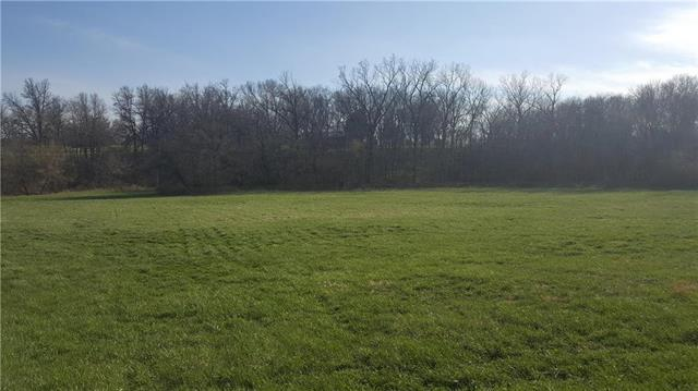 Pirate Circle, Gallatin, MO 64640 (#2106520) :: The Shannon Lyon Group - ReeceNichols
