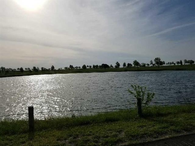 21115 S Mckee Lane, Pleasant Hill, MO 64080 (#2106780) :: Edie Waters Network