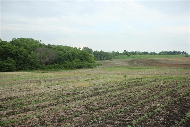 139 Highway, Luceme, MO 64655 (#2109177) :: Team Real Estate