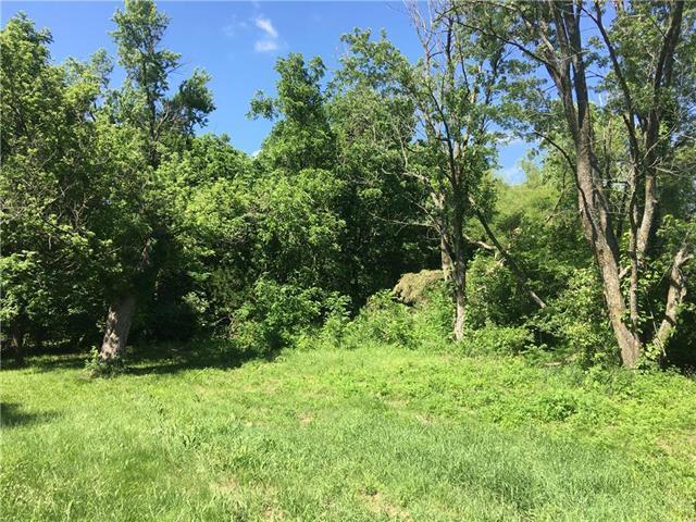 Plum Creek Road, Osawatomie, KS 66064 (#2110300) :: Edie Waters Network