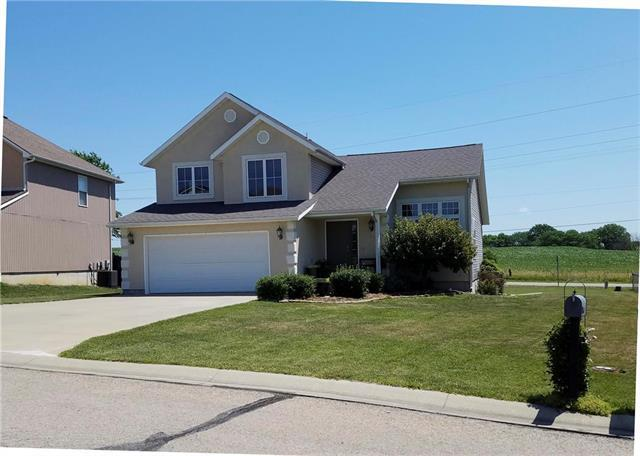 1203 Wildflower Road, Warrensburg, MO 64093 (#2113813) :: Char MacCallum Real Estate Group