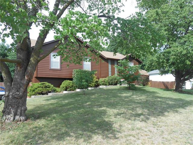 105 NE Leann Drive, Blue Springs, MO 64014 (#2114173) :: No Borders Real Estate