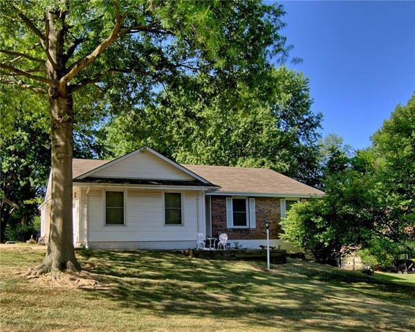 10017 E 56th Terrace, Raytown, MO 64133 (#2114267) :: No Borders Real Estate