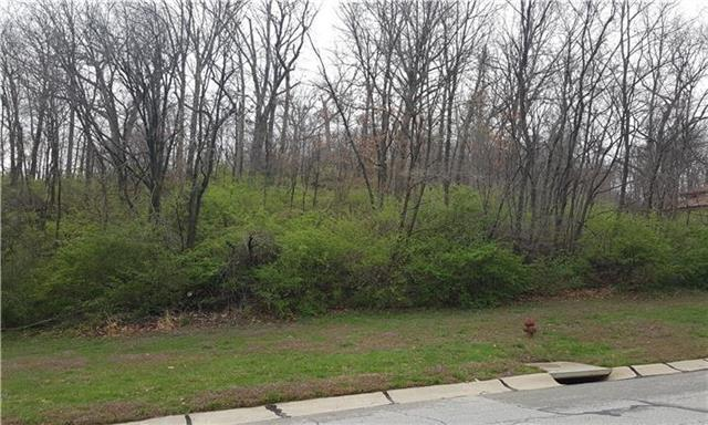 Lot 1 N Riverchase Lane, Parkville, MO 64151 (#2117661) :: Edie Waters Network