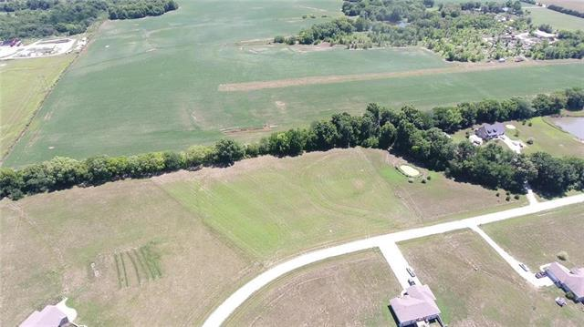 Lot 15 NW 451st Road, Centerview, MO 64019 (#2118815) :: Ask Cathy Marketing Group, LLC