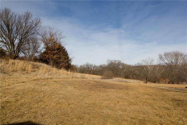 Reynolds. Road, Orrick, MO 64077 (#2119104) :: Edie Waters Network