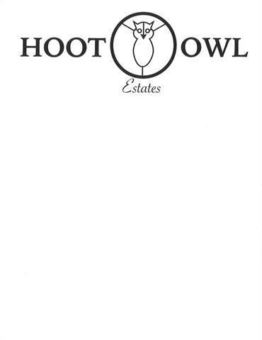 113 NE Hoot Owl Street, Grain Valley, MO 64029 (#2119361) :: No Borders Real Estate