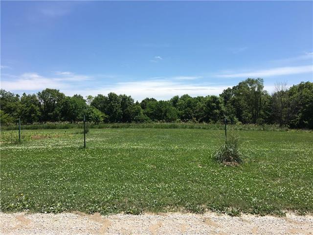 Klatt Road, Excelsior Springs, MO 64024 (#2121168) :: Edie Waters Network