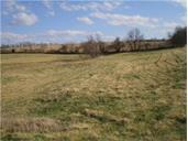 Lot 27 Mulberry Road, Odessa, MO 64076 (#2125872) :: No Borders Real Estate