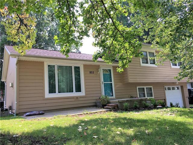 803 S 9th Street, Louisburg, KS 66053 (#2126084) :: Edie Waters Network
