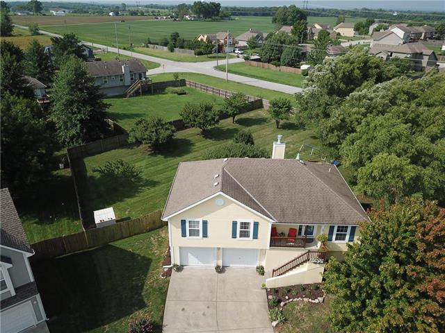 10015 E 220th Place, Peculiar, MO 64078 (#2126917) :: Edie Waters Network