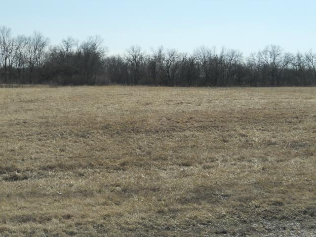 Lot 11 203rd Street, Lawson, MO 64062 (#2128207) :: Kansas City Homes