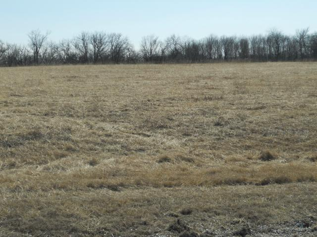 Lot 12 203rd Street, Lawson, MO 64062 (#2128210) :: Kansas City Homes