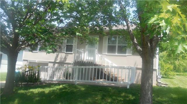 1001 Renee Lynde Drive, Pleasant Hill, MO 64080 (#2130570) :: Edie Waters Network