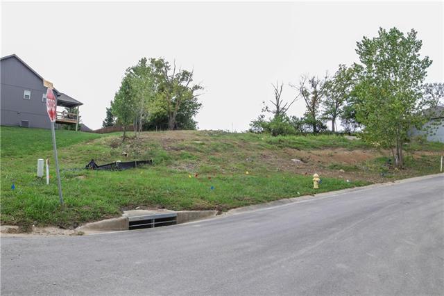 301 Deer Drive, Liberty, MO 64068 (#2131373) :: No Borders Real Estate