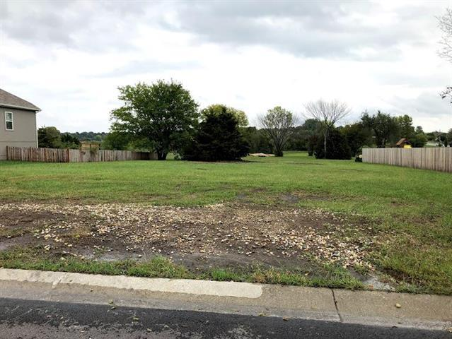 513 Silver Top Lane, Raymore, MO 64083 (#2133549) :: No Borders Real Estate