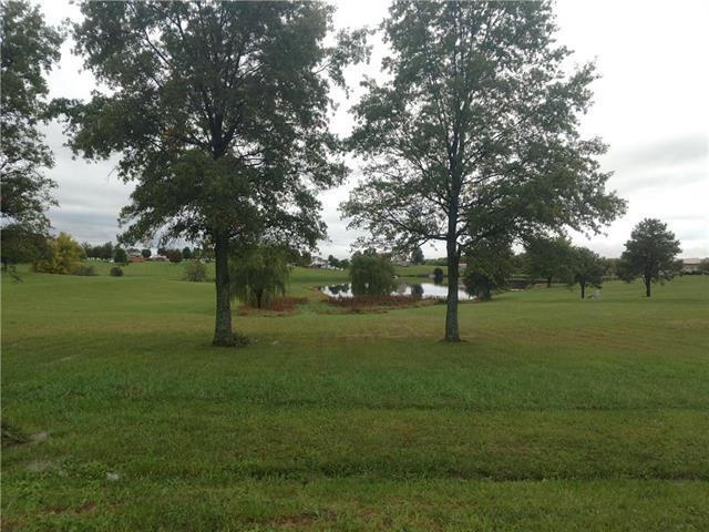6744 Oakwood Drive, Odessa, MO 64076 (#2133602) :: Edie Waters Network