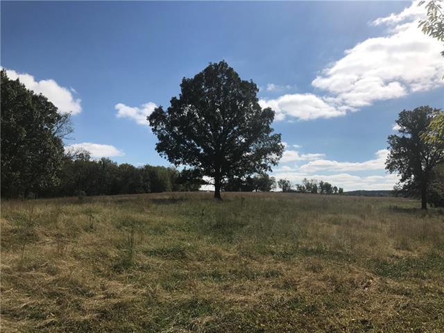 0000 W 750 Road, Mound City, KS 66056 (#2134940) :: The Shannon Lyon Group - ReeceNichols