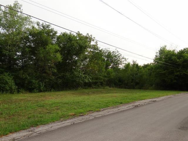 4600 NW Goulden Roberts Road, Blue Springs, MO 64015 (#2135819) :: The Gunselman Team