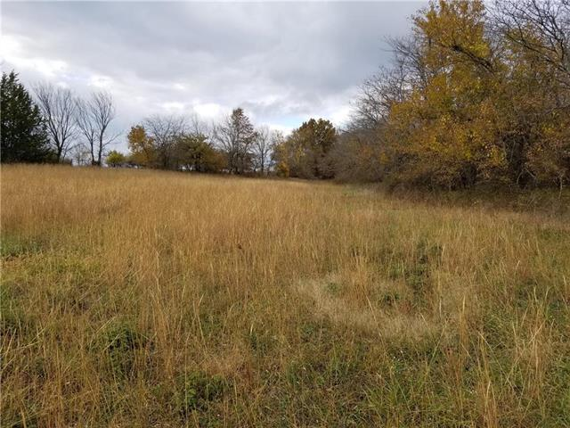 Lot 10 NW 1261st Road, Holden, MO 64040 (#2137355) :: No Borders Real Estate