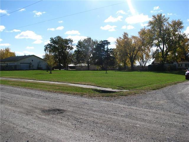 Dorman Avenue, Fontana, KS 66026 (#2137569) :: No Borders Real Estate