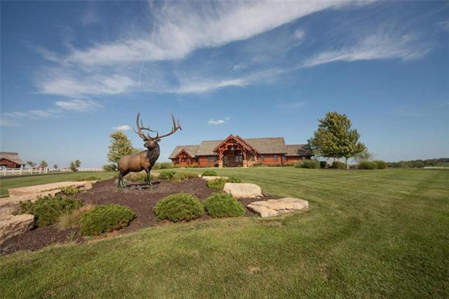 32803 S Route D Highway, Drexel, MO 64742 (#2138754) :: Ron Henderson & Associates