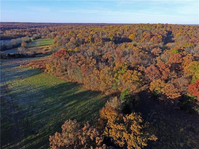 B Highway, Cole Camp, MO 65326 (#2140044) :: Team Real Estate