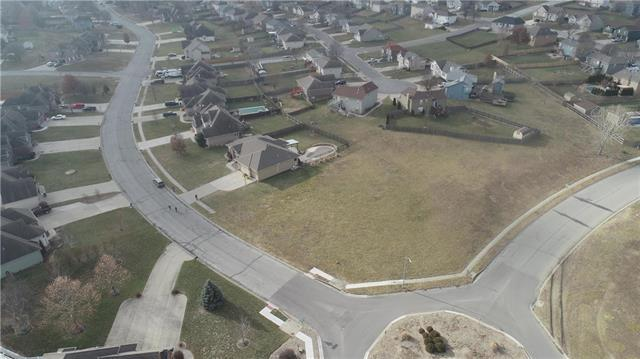 Cross Creek Drive, Grain Valley, MO 64029 (#2142357) :: The Gunselman Team
