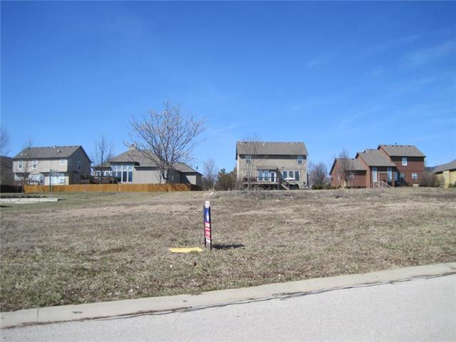 307 Broadmoor Drive, Louisburg, KS 66053 (#2144132) :: House of Couse Group