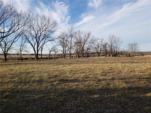 W 359TH Street, Osawatomie, KS 66064 (#2147231) :: House of Couse Group