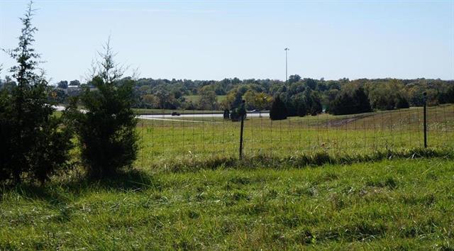 13241 Canaan Center Court, Bonner Springs, KS 66012 (#2148700) :: The Gunselman Team