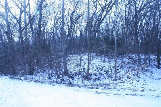 Lot 34 Holstein Drive, Oak Grove, MO 64075 (#2151058) :: Eric Craig Real Estate Team