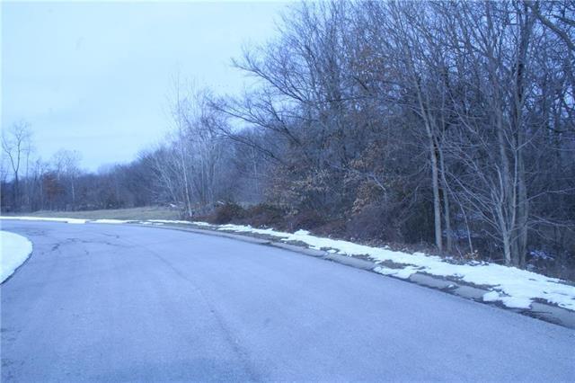 Lot 32 Holstein Drive, Oak Grove, MO 64075 (#2151067) :: Eric Craig Real Estate Team
