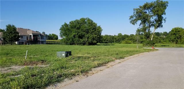 2509 NE Wheatley Drive, Blue Springs, MO 64029 (#2154732) :: Eric Craig Real Estate Team