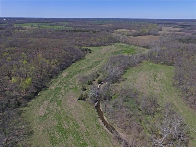 Younger Road, Nelson, MO 65347 (#2159656) :: Edie Waters Network