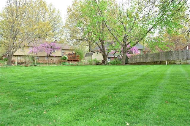 Holly Avenue, Harrisonville, MO 64701 (#2159995) :: House of Couse Group