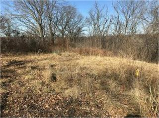 Lot 11 Chateau Lane, Parkville, MO 64152 (#2160233) :: House of Couse Group