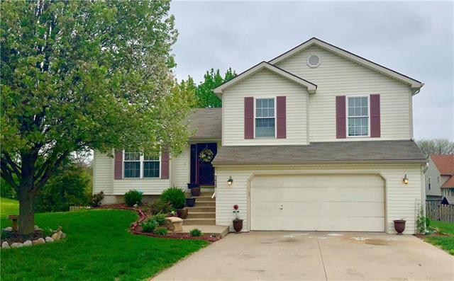 1428 NE 102nd Terrace, Kansas City, MO 64155 (#2160617) :: NestWork Homes