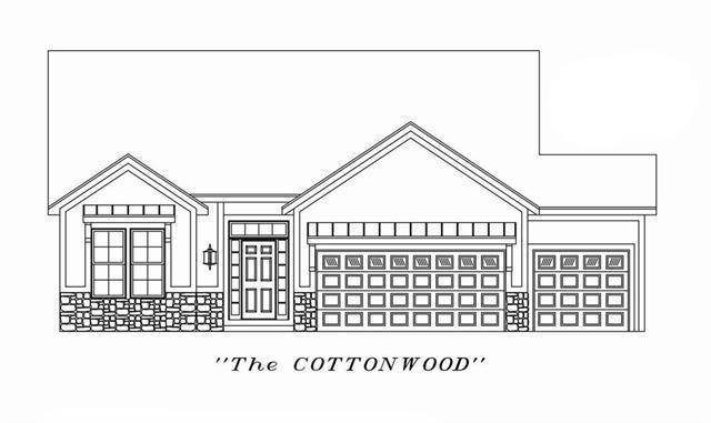 2801 Cedar Place, Tonganoxie, KS 66086 (#2160964) :: NestWork Homes