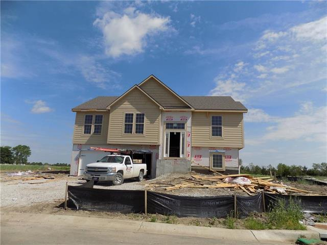 118 NE Jensen Street, Grain Valley, MO 64029 (#2163667) :: House of Couse Group